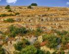 Rosolini. Interesse archeologico per Cava Grande, avvia l'iter dalla Soprintendenza