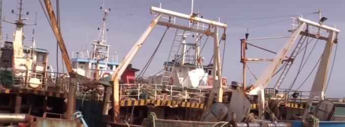 Caro Salvini, 'Prima gli italiani' vale pure per i pescatori siciliani?