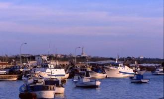 Pesca, un progetto siciliano su biodiversità e sicurezza