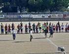 Calcio, al Pachino il derby dell'estremo sud